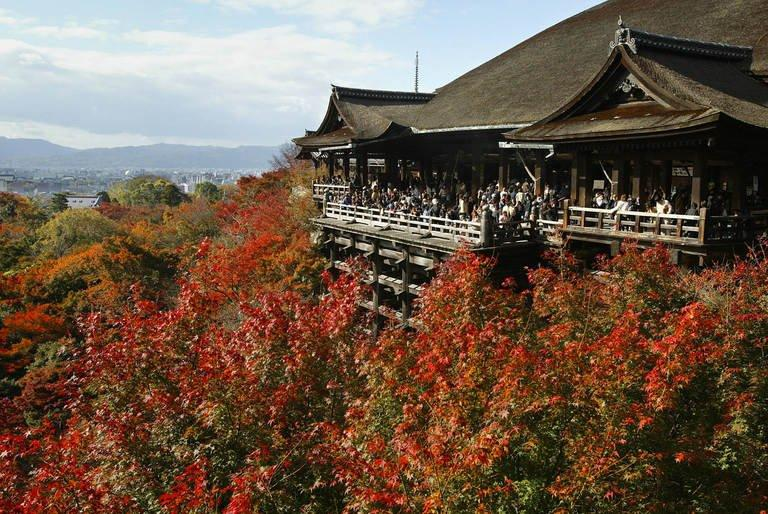 Colored leaves surround Kiyomizu Temple in Japan's ancient city of Kyoto on 22 November 2003