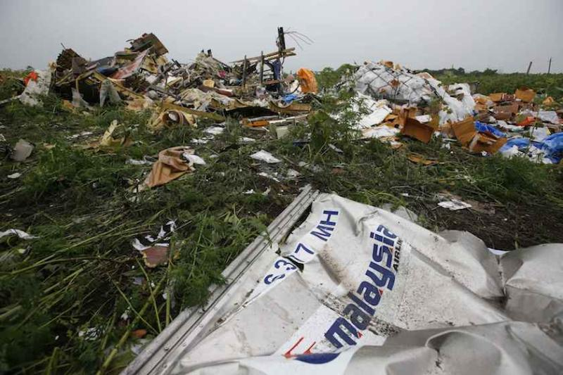 Wreckage from the nose section of the MH17 plane is seen near the village of Rozsypne, in the Donetsk region July 18, 2014. — Reuters file pic