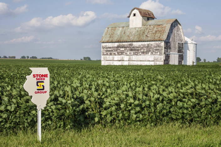 Tuscola barn, soybean seed marker sign. (Photo by: Jeffrey Greenberg/Universal Images Group via Getty Images)