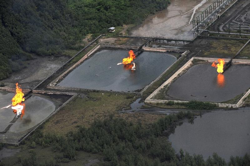 Gas flare is seen at Shell Cawtharine Channel, Nembe Creek in the Niger Delta on March 22, 2013