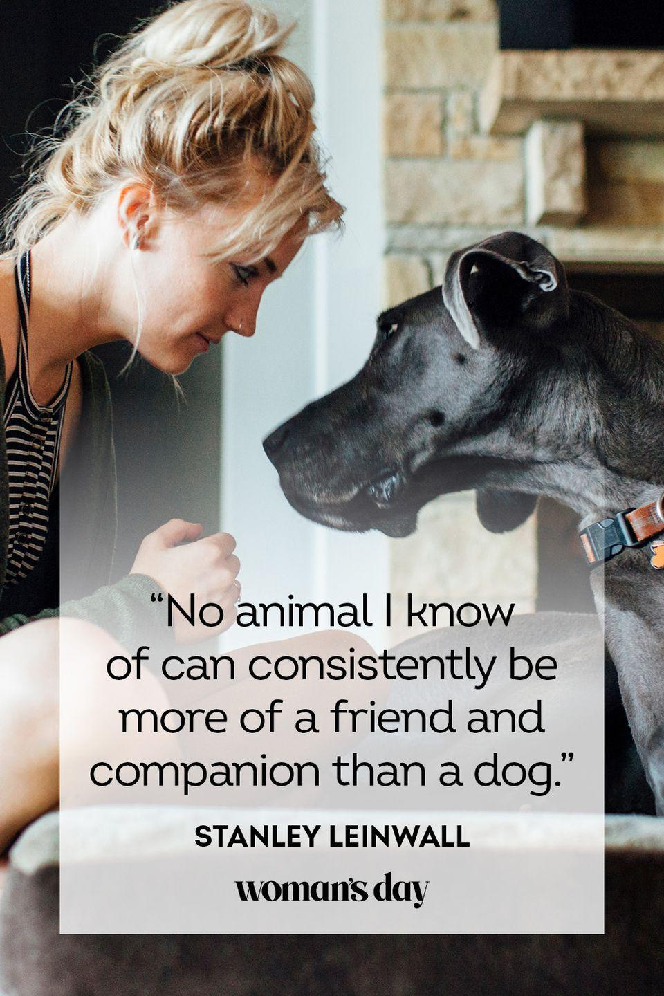 """<p>""""No animal I know of can consistently be more of a friend and companion than a dog."""" </p>"""