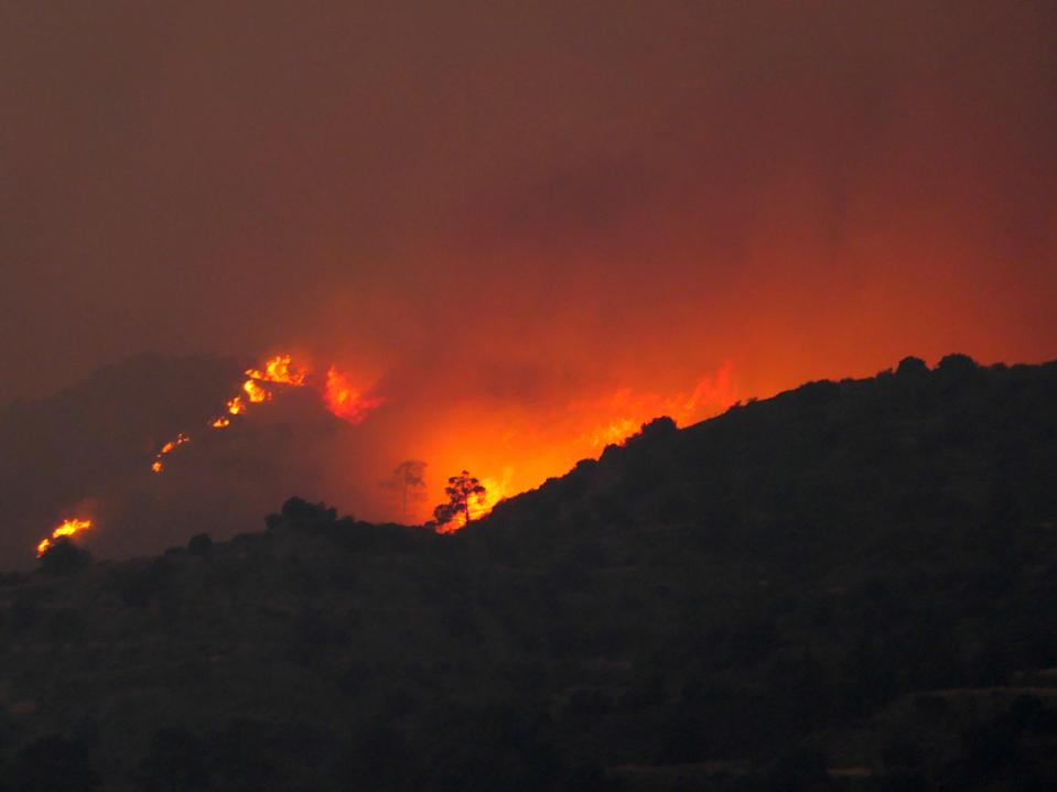 A view of the forest fire on a mountain in the Larnaca region of Cyprus (EPA)