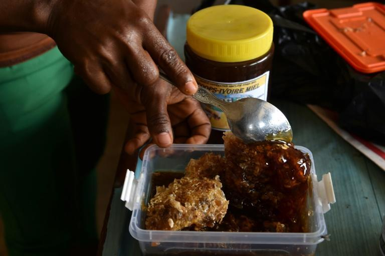 Liquid gold: A beekeeping cooperative in the town of Katiola prepares honey for sale