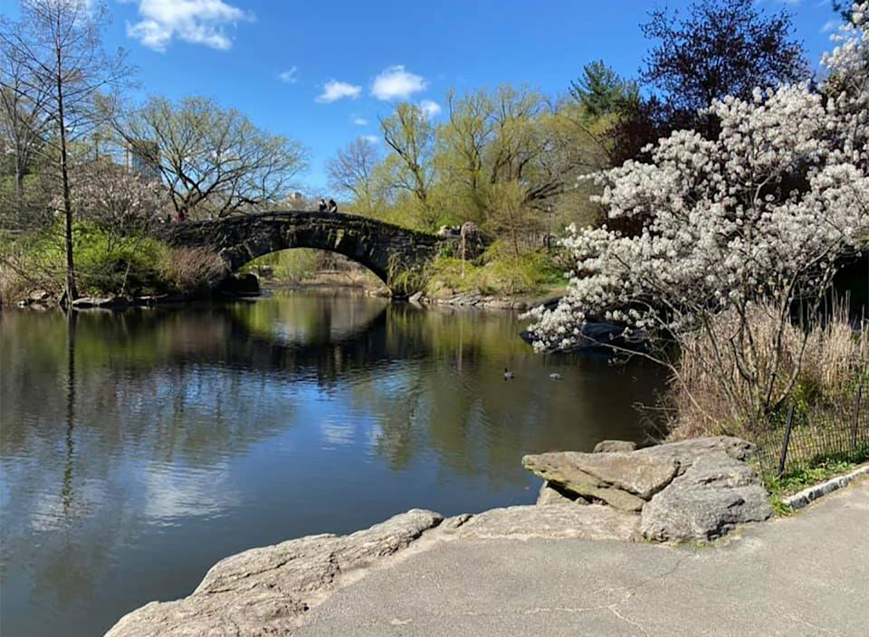 hallett nature sanctuary in central park new york city