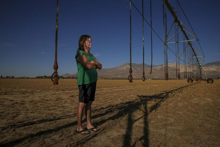 A woman stands in a barren field beneath irrigation pipes
