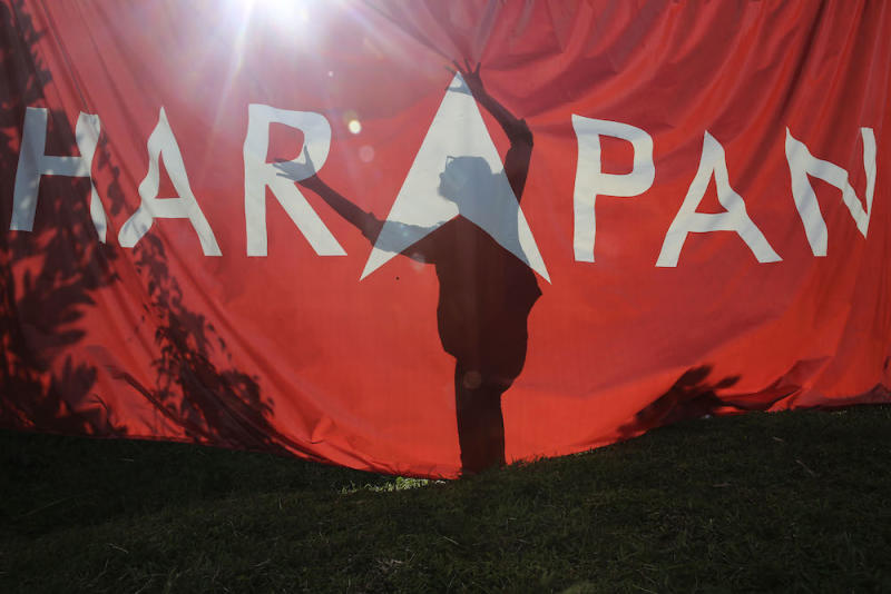 The shadow of a campaign worker is seen against a Pakatan Harapan flag at Pasir Panjang in Port Dickson October 11, 2018. — Picture by Yusof Mat Isa