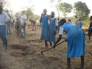 Trees 4 Children Project Empowers a Kenyan Village of AIDS Survivors to Become Self-Sufficient