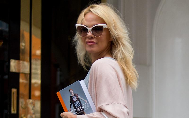 Pamela Anderson delivers lunch to Julian Assange - 2016 Getty Images