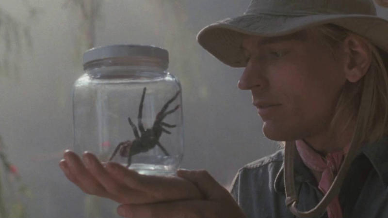 'Arachnophobia' became a box office hit in 1990. (Credit: Buena Vista Pictures)