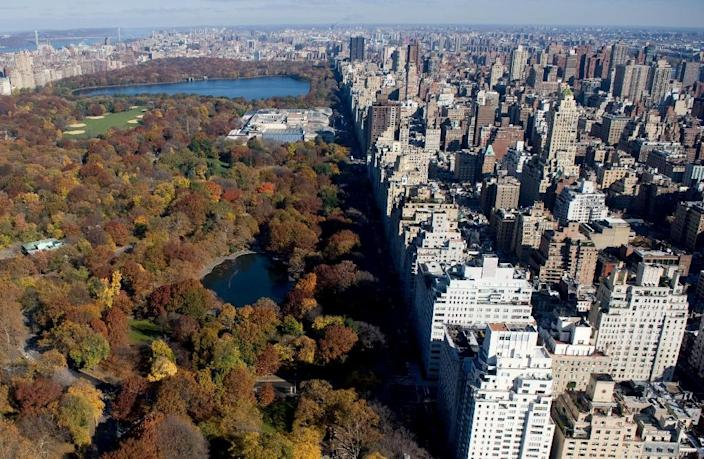 New York's Central Park along Fifth Avenue is viewed on November 11, 2008 (AFP Photo/Saul Loeb)