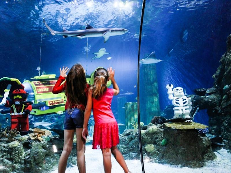The Carlsbad-based aquarium, along with the Legoland theme park and water park been closed since mid-March. 