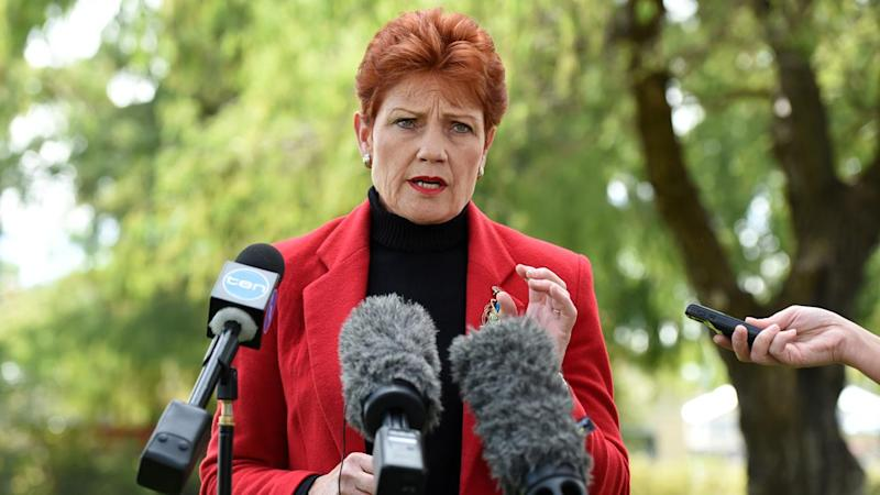 Australia's race discrimination commissioner fears Pauline Hanson could spawn hatred and division.