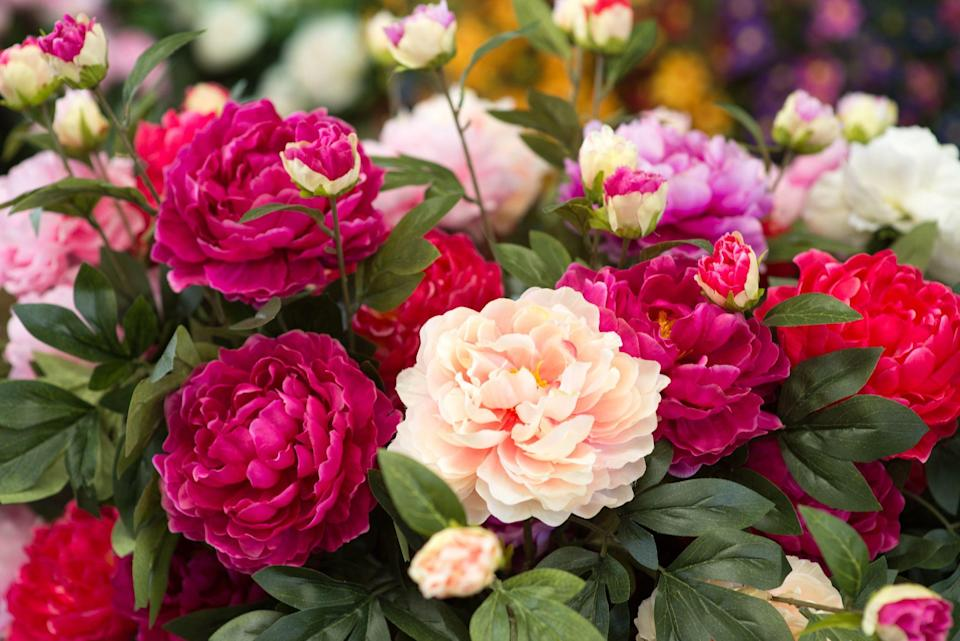 """<p>Everyone knows the phrase, """"A rose by any other name would smell as sweet."""" And sure, the name of a flower may not carry a whole lot of symbolism — but the meaning behind your favorite blooms can have a significant impact on the <a href=""""https://www.goodhousekeeping.com/holidays/valentines-day-ideas/g4122/valentines-day-gifts-for-her/"""" rel=""""nofollow noopener"""" target=""""_blank"""" data-ylk=""""slk:Valentine's day gift"""" class=""""link rapid-noclick-resp"""">Valentine's day gift</a>. You probably choose bouquets based on the types of flowers your recipient likes best, or whichever ones look or smell prettiest. Tulips, for example, are a quick impulse buy at your local grocery store. And roses, obviously, are a romantic gesture for special occasions. But both of these gifts are heavy with meaning.</p><p>Turns out, a rose is <em>not</em> simply a rose — it carries a powerful message to its recipient that can turn a regular old bunch of blooms into a beautiful expression of love, gratitude, or friendship. And as you probably know, there are different <a href=""""https://www.goodhousekeeping.com/holidays/valentines-day-ideas/g1352/rose-color-meanings/"""" rel=""""nofollow noopener"""" target=""""_blank"""" data-ylk=""""slk:meanings for different colored roses"""" class=""""link rapid-noclick-resp"""">meanings for different colored roses</a>. While many flowers are linked to romance and passion, you may be shocked to learn that some of the most popular ones actually symbolize negativity, anger, or loss. Before you <a href=""""https://www.goodhousekeeping.com/home/gardening/advice/g2323/best-flower-delivery-service/"""" rel=""""nofollow noopener"""" target=""""_blank"""" data-ylk=""""slk:buy delivery flowers"""" class=""""link rapid-noclick-resp"""">buy delivery flowers </a>for a family member or your S.O. with accidental funereal connotations, check out these flower meanings from <em><a href=""""https://www.amazon.com/Victorian-Flower-Dictionary-Language-Companion/dp/0345532864?tag=syn-yahoo-20&ascsubtag=%5Bartid%7C10063.g.35201436%5Bsrc%7Cyahoo-"""