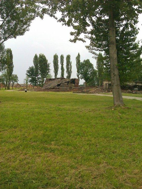 The last selection took place on October 30, 1944. The next month, Heinrich Himmler ordered the crematoria destroyed before the Red Army reached the camp. The gas chambers of Birkenau were blown up by the SS in January 1945 in an attempt to hide the German crimes from the advancing Soviet troops.