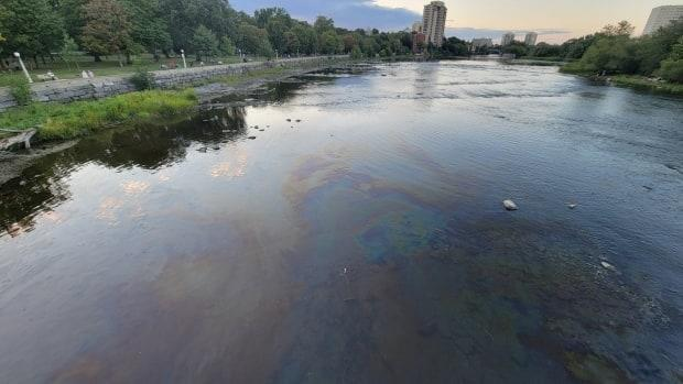 Ontario's Ministry of the Environment was told about a potential oil spill in Ottawa's Rideau River Sept. 5, 2021. It said the city and firefighters couldn't find any petroleum. (Eric Stewart - image credit)