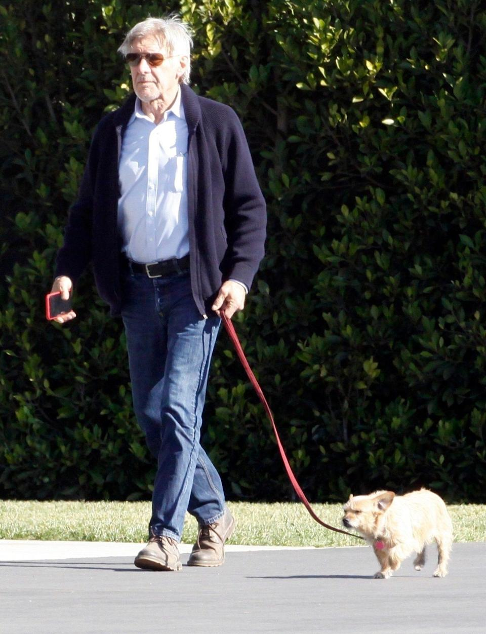 <p>Harrison Ford leads his pup through Los Angeles on Wednesday.</p>