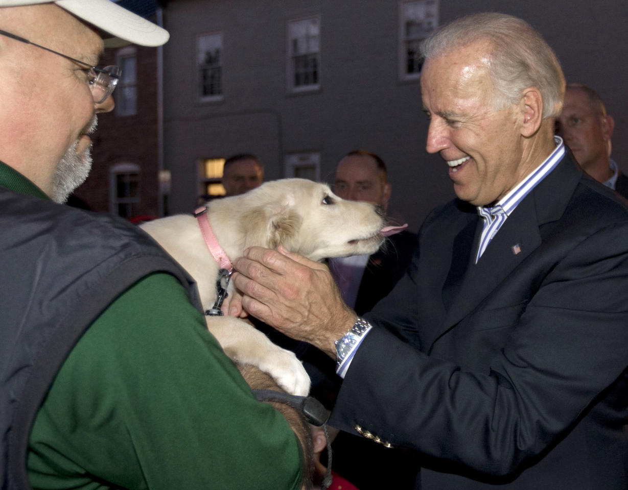 In this Sept. 8, 2012, photo, Vice President Joe Biden pets a golden retriever puppy named Karma held by her owner Rod Siddons outside a Obama campaign office in Chilicothe, Ohio. Biden buddied up with bikers, posed for countless pictures at a pizza place and downed an ice cream cone at a Dairy Queen over the weekend as he toured Ohio. Biden loves Ohio. The only question now is whether Ohio loves him _ and President Barack Obama. (AP Photo/Carolyn Kaster)