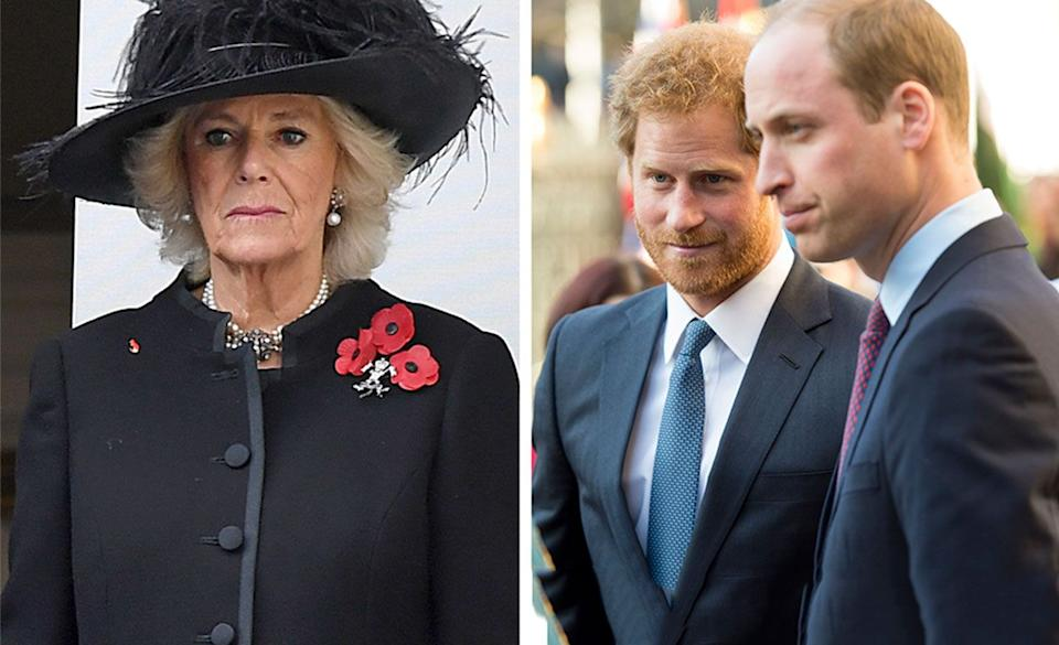 Harry and William can stop Camilla becoming Queen