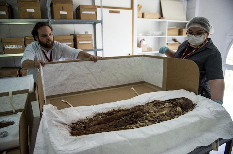 Over 7,000 years after they were embalmed by the Chinchorro people, an ancient civilization in modern-day Chile and Peru, 15 mummies underwent DNA analysis and scans (AFP Photo/Martin BERNETTI)