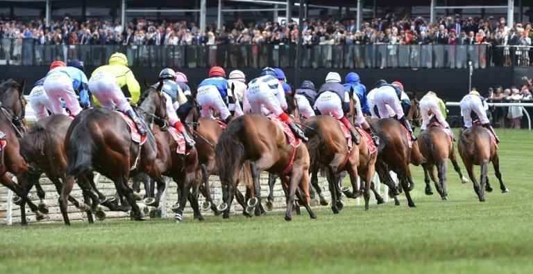 The Victoria Racing Club said 10% of ticket sales from the Melbourne Cup Carnival and 5% of annual membership fees would go to fund retired horse welfare (AFP Photo/PAUL CROCK)