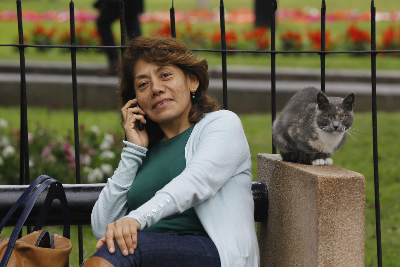 A woman talks on her phone as a cat sits on an arm rest nearby, in the central park of Lima's upscale seaside Miraflores district, in Peru, Wednesday, Aug. 2, 2012. (AP Photo/Martin Mejia)