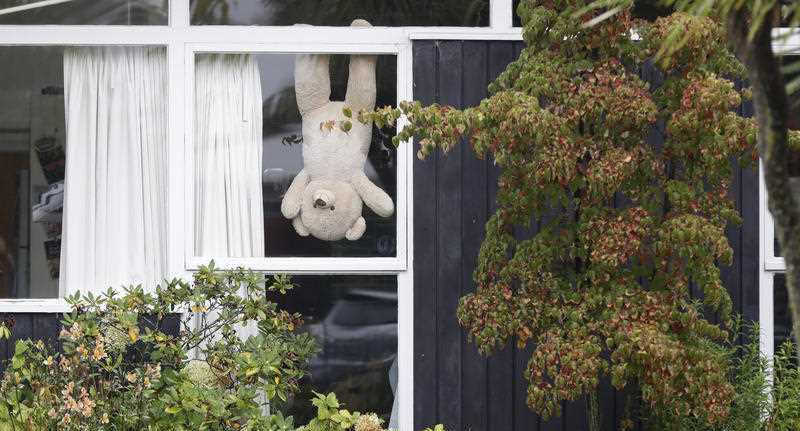 Bears are appearing in windows across the country. Source: AP