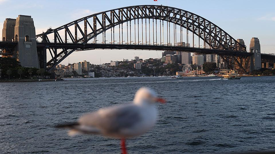 Power outages have been observed across Sydney, as the city swelters through a heatwave. Source: AAP