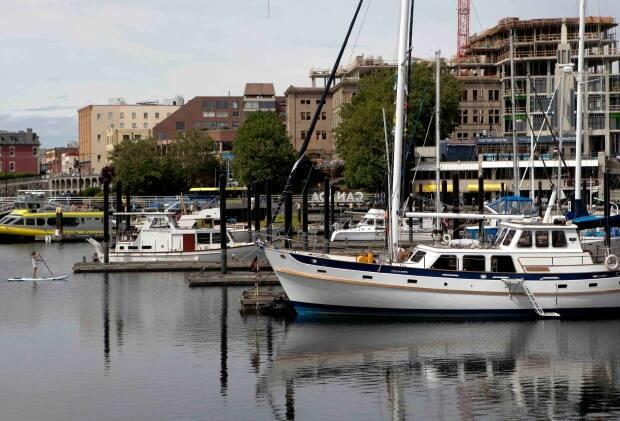 Victoria's Inner Harbour is pictured here. The City of Victoria is looking at creating a bylaw to address what some say are gaps in the province's renoviction legislation. (Chad Hipolito/Canadian Press  - image credit)