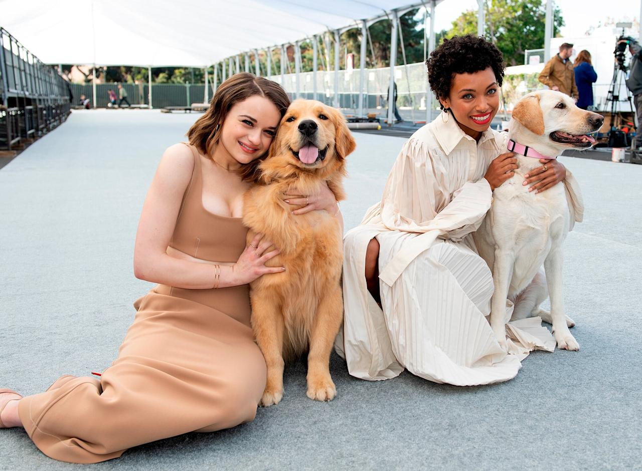 SAG Awards ambassadors Joey King and Logan Browning cuddle up to Subaru's The Barkleys at the Silver Carpet Roll Out Event for the 26th Annual Screen Actors Guild Awards at The Shrine Auditorium in L.A. on Friday.