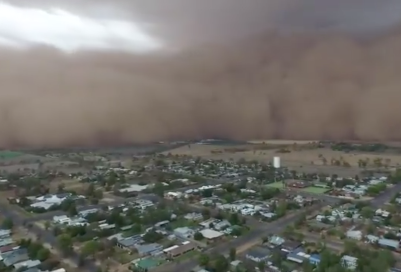 Narromine homes were engulfed by a dust storm.