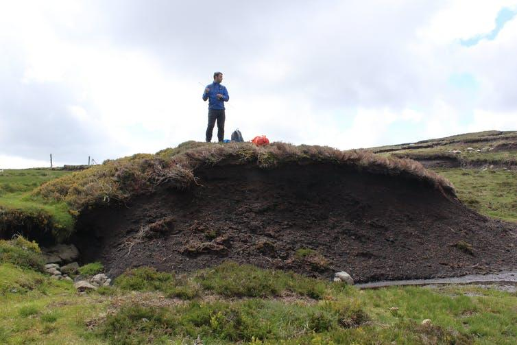 The author stood on a large bank of excavated peat.