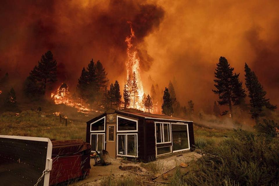 The Tamarack Fire burns behind a greenhouse in Alpine County, California, on July 17, 2021.