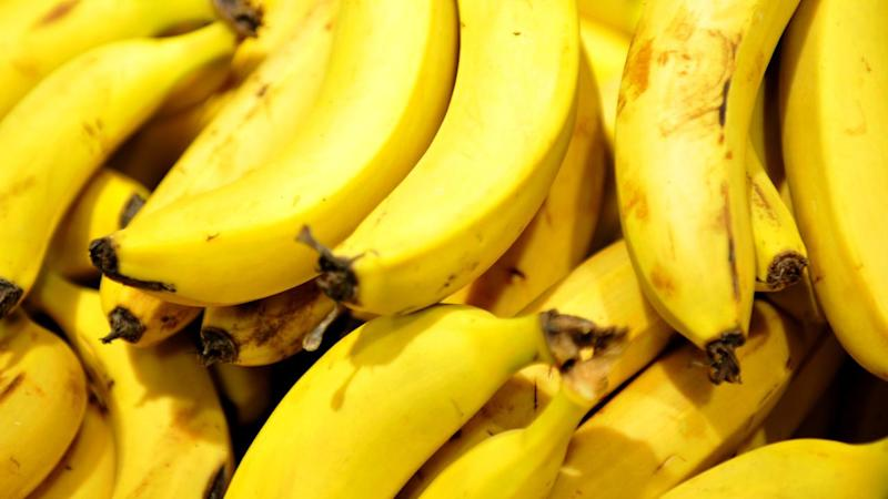A Queensland expert says reports of the imminent death of the banana have been greatly exaggerated.