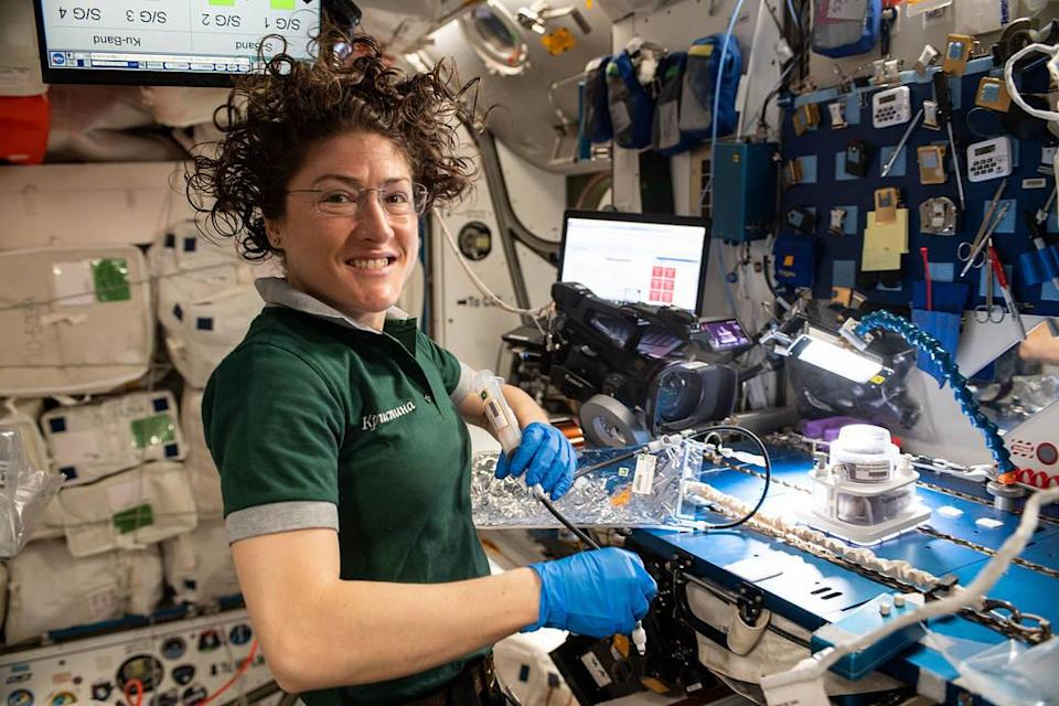 Christina Koch works on a space botany experiment during her time on the ISS: Nasa
