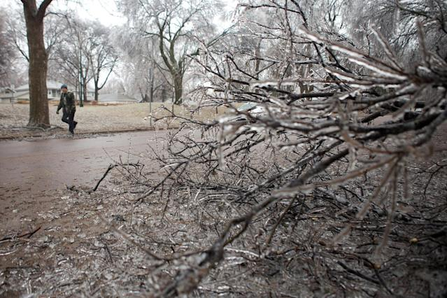 Ice coats a tree on Tuesday, April 9, 2013, in Sioux Falls, South Dakota, as a passerby tries to clear a fallen branch from the street. An early spring storm walloped South Dakota early Tuesday, bringing everything from rain, thunder and lightning to heavy snow and strong winds. (AP Photo/Amber Hunt)