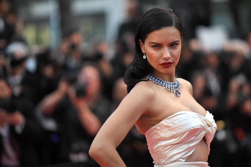The supermodel posed for the cameras on the red carpet ahead of the screening (AFP/Getty Images)