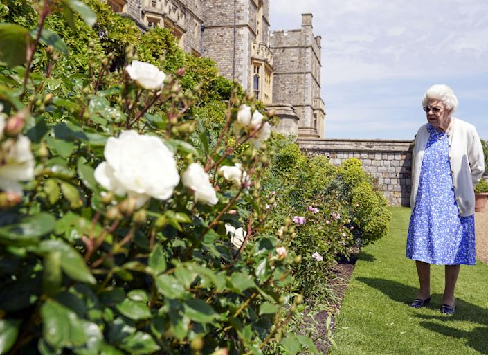 EMBARGOED TO 2200 WEDNESDAY JUNE 9 Queen Elizabeth II views a border in the gardens of Windsor Castle, in Berkshire, where she received a Duke of Edinburgh rose, given to her by the Royal Horticultural Society. The newly bred deep pink commemorative rose from Harkness Roses has officially been named in memory of the Duke of Edinburgh. A royalty from the sale of each rose will go to The Duke of Edinburgh's Award Living Legacy Fund which will give more young people the opportunity to take part in the Duke of Edinburgh Award. Picture date: Wednesday June 2, 2021. The Duke, who died in April this year, would have celebrated his 100th birthday on June 10th.