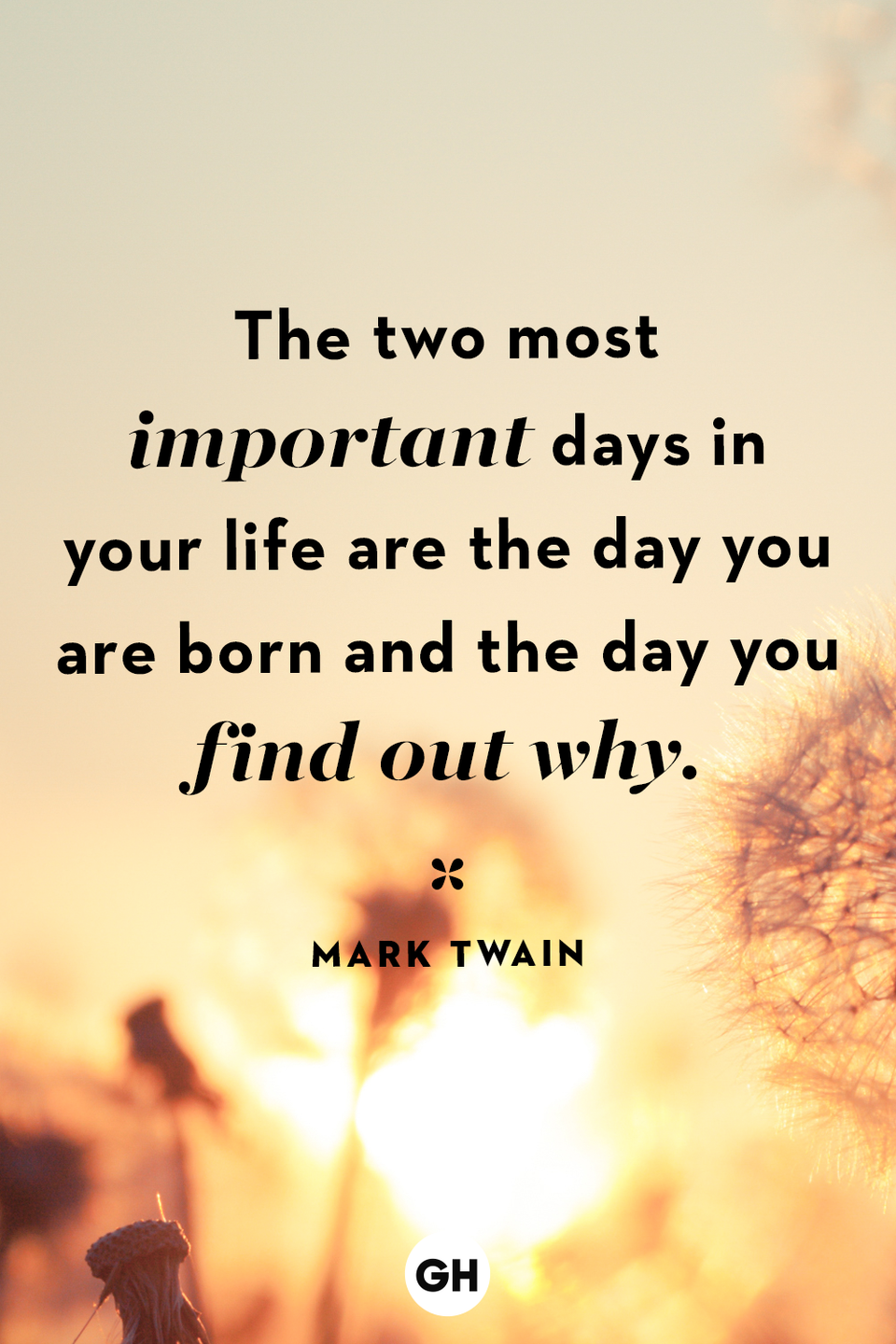 <p>The two most important days in your life are the day you are born and the day you find out why. </p>