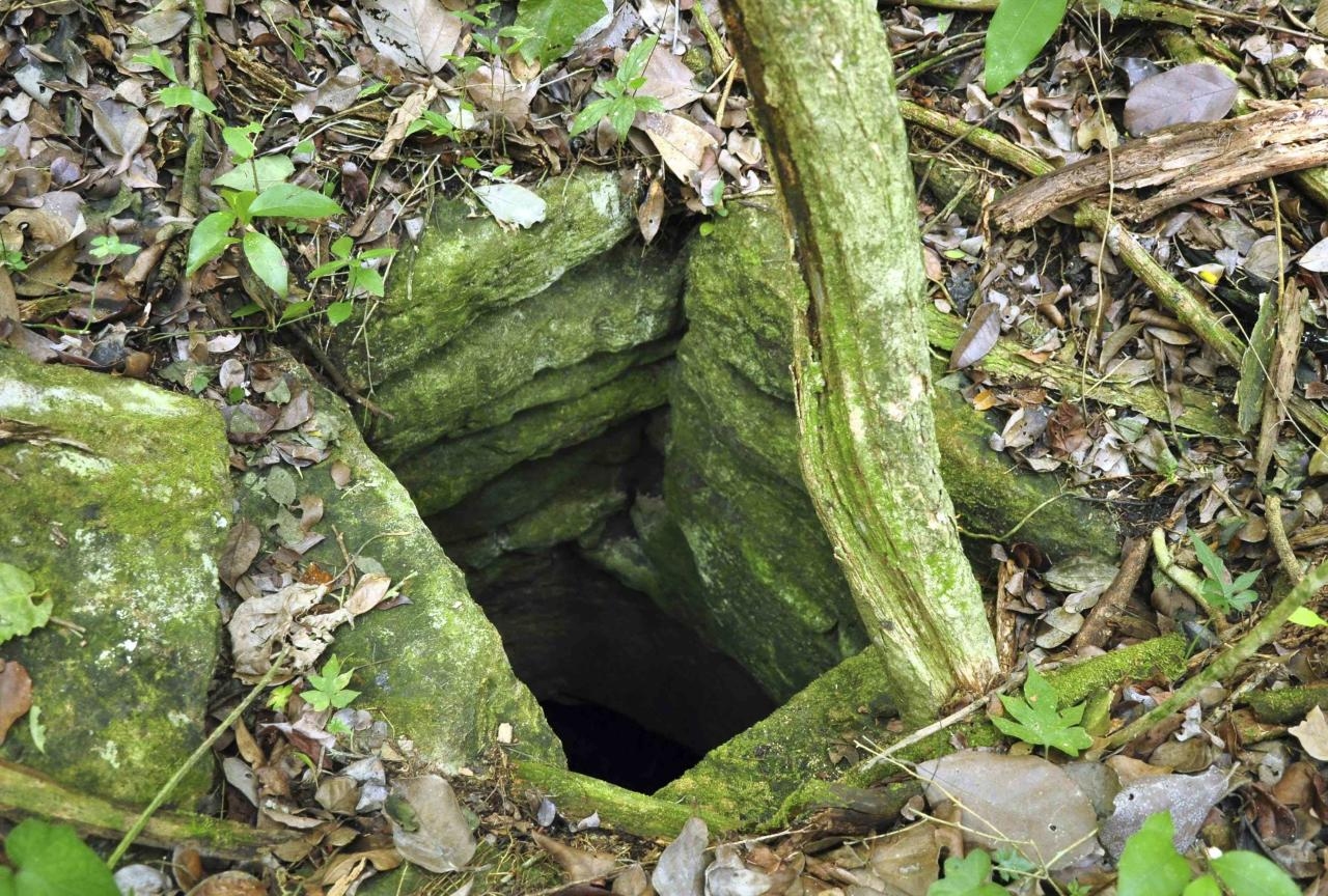 "A photograph released to Reuters on August 22, 2014 shows a chultun, an underground chamber for the collection of rainwater inTamchen May 5, 2014. Archaeologists have found two ancient Mayan cities hidden in the jungle of southeastern Mexico, and lead researcher Ivan Sprajc, an associate professor at the Research Center of the Slovenian Academy of Sciences and Arts, says he believes there are ""dozens"" more to be found in the region. Picture taken May 5, 2014. REUTERS/Research Center of the Slovenian Academy of Sciences and Arts/Handout via Reuters (MEXICO - Tags: SOCIETY) NO SALES. NO ARCHIVES. FOR EDITORIAL USE ONLY. NOT FOR SALE FOR MARKETING OR ADVERTISING CAMPAIGNS. THIS IMAGE HAS BEEN SUPPLIED BY A THIRD PARTY. IT IS DISTRIBUTED, EXACTLY AS RECEIVED BY REUTERS, AS A SERVICE TO CLIENTS"