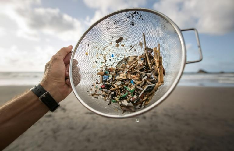 14 million tonnes of microplastics on sea floor: Australian study