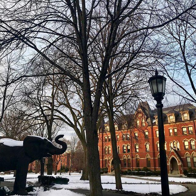 """<p>Medford, Massachusetts</p><p>Tuition: <a href=""""http://admissions.tufts.edu/tuition-and-aid/tuition-and-aid/"""" rel=""""nofollow noopener"""" target=""""_blank"""" data-ylk=""""slk:$53,152"""" class=""""link rapid-noclick-resp"""">$53,152</a></p><p><a href=""""https://www.instagram.com/p/BcmnHQYhtCE/?hl=en&taken-by=tuftsuniversity"""" rel=""""nofollow noopener"""" target=""""_blank"""" data-ylk=""""slk:See the original post on Instagram"""" class=""""link rapid-noclick-resp"""">See the original post on Instagram</a></p>"""