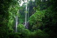 <p><strong>Let's start big picture here.</strong> Based in North Bali's sedate countryside, Sekumpul is considered by many to be the island's finest waterfall destination. Patient hikers are rewarded with a vast expanse of idyllic tropical landscapes, and grand-scale waterfalls which appear to pour from the heavens.</p> <p><strong>Any standout features or must-sees?</strong> The namesake falls are arguably the most spectacular of the three main waterfalls one can visit in the park (the others are Fiji Waterfall and Hidden Waterfall). The Eden-like scene of three silky white strands of water falling amidst dense bamboo forest is overwhelmingly beautiful.</p> <p><strong>Was it easy to get around?</strong> Like most North Bali waterfalls, accessing Sekumpul will require some sweat. It'll take around an hour to walk the trails and make your way down the verdant ravine and through the Sekumpul village to reach the main falls. Each tiered ticket entry comes with a guide, so you'll never lose your way. Protective, non-slippery shoes as well as clothing and gear you don't mind getting wet are the way to go.</p> <p><strong>All said and done, what—and who—is this best for?</strong> It's a full day affair coming from/to Ubud or Southwest Bali, more than two hours each way, so hiring a driver is highly recommended. One should allot a few hours to maximize time in the lush jungle and its vast network of cascades. If exploring Bali's paradiscal scenery is a priority, a visit to Sekumpul Waterfall is practically essential.</p>