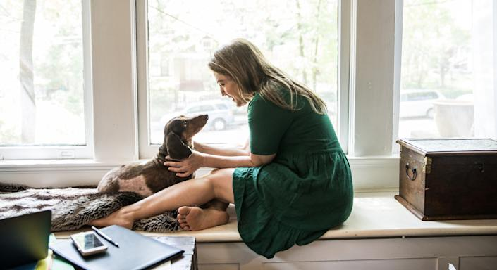 New research has found that puppies can understand human faces and gestures from birth. (Getty Images)