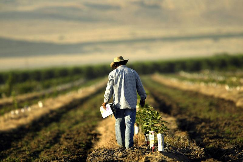 America's Farmers Need More Than a Trade Truce