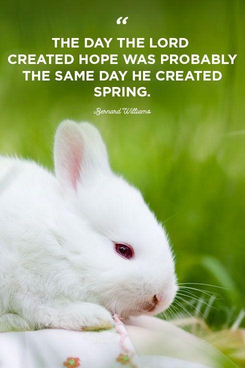 """<p>""""The day the Lord created hope was probably the same day He created spring.""""</p>"""