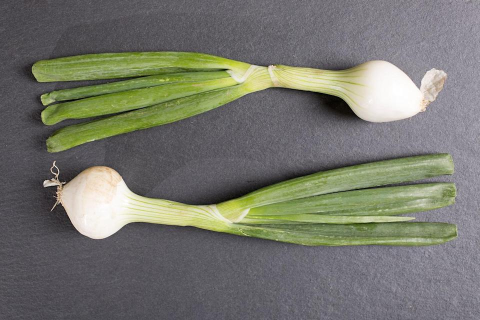 "<p>Spring onions may look a heck of a lot like scallions, but they are very much their own thing. You can tell the difference by the bigger bulb at the base of spring onions. Flavor-wise, these are sweeter and slightly less strong than regular onions, though they have a more potent flavor than scallions, especially in the greens. If you find these at your farmers market, get to know them well by <a href=""https://www.thedailymeal.com/recipes/spring-onions-romesco-sauce-recipe?referrer=yahoo&category=beauty_food&include_utm=1&utm_medium=referral&utm_source=yahoo&utm_campaign=feed"" rel=""nofollow noopener"" target=""_blank"" data-ylk=""slk:grilling them and serving with a spicy romesco sauce"" class=""link rapid-noclick-resp"">grilling them and serving with a spicy romesco sauce</a>.</p>"