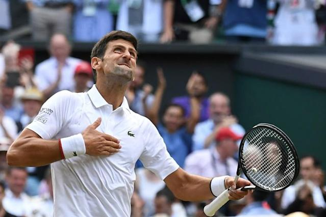 Top of the world: Novak Djokovic celebrates his victory over Roger Federer in the 2019 Wimbledon final (AFP Photo/Ben STANSALL)