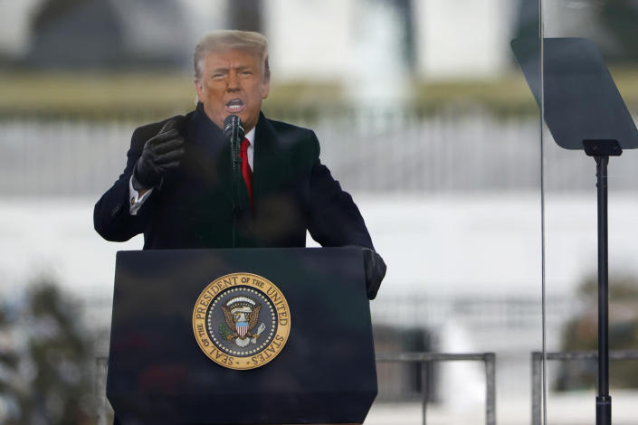 """President Donald Trump speaks at the """"Stop The Steal"""" Rally on January 06, 2021 in Washington, DC. (Tasos Katopodis/Getty Images)"""