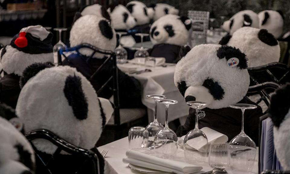 The owner of a closed restaurant has placed plush panda bears at the tables in central Frankfurt, Germany