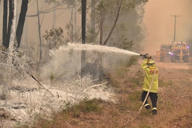 A firefighter sprays foam retardant on a back burn ahead of a fire front in the New South Wales town of Jerrawangala. (Photo by PETER PARKS / AFP) (Photo by PETER PARKS/AFP via Getty Images)